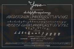 Yesie Product Image 3