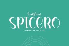 Web Font Spicero Product Image 1