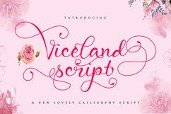 Viceland script Product Image 1