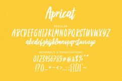 Apricat Brush Script Product Image 6