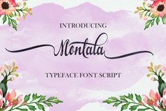 Special Bundle-Font Collection Product Image 2