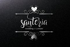 Hollyn Script with Ornaments Font Product Image 11