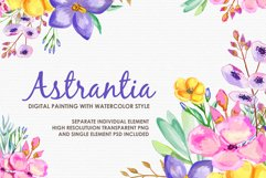 Astrantia - Digital Watercolor Floral Flower Style Clipart Product Image 1