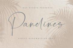 Panelines - Script Handwritten Font Product Image 1