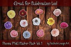 Peonies Sticker Pack of 13 PNG Clip Art Sublimation 300dpi Product Image 2