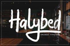 Halybed   Grunge Typeface Font Product Image 1