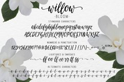 Modern calligraphy font Willow Bloom Product Image 5