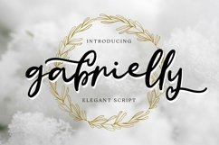 Web Font Gabrielly - Elegant Script Font Product Image 1