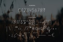 Veronica - Script Font Product Image 5