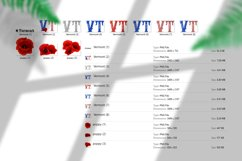 State abbreviation. USA sublimation. Vermont Product Image 5