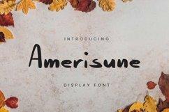 Web Font Amerisune Font Product Image 1