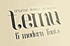 temu - Modern Font Product Image 3