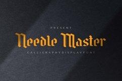 Web Font Needle Master Display Font Product Image 1