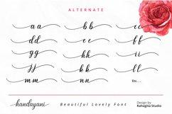 Handayani - Beutiful Script Font Product Image 5