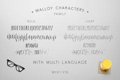 Malloy Font +Elements Product Image 4