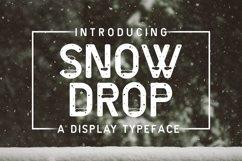 Web Font Snow Drop Product Image 1