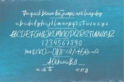 Anadego | Beauty Handwritten Script Font Product Image 6
