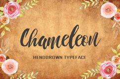Chameleon Product Image 1