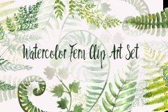 Watercolor Fern Clip Art Set Product Image 1