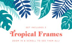 Tropical Illustrations Product Image 2
