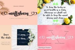 Best Seller Calligraphy Font Bundle Product Image 7