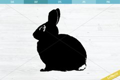 Bunny Cut File, Rabbit SVG, Easter Bunny Cutting File Product Image 2