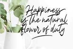 Magnolia A Stylish Calligraphy Font Product Image 5