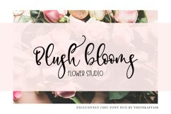 Exclusively Chic Font Duo Product Image 2