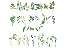 Hand Painted Watercolor Green Leaf Clip Art Product Image 3