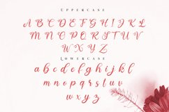 real love // a lovely calligraphy font Product Image 6