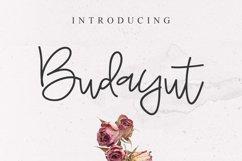 Budayut signature font Product Image 1