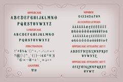 Herosita Typeface - Bonus Ornament Product Image 6