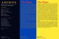 ANIMUS - Serif font family Product Image 6