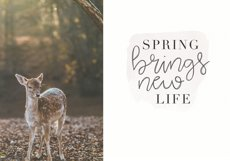 Blooming - Handwritten Font Product Image 2