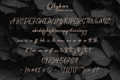 Ollykers Brush Script Font Product Image 3