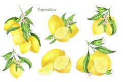 Watercolor Lemon Clipart, Lemon Frame, Lemon Wreath, Summer Product Image 4