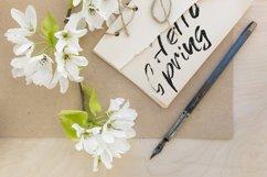 Grunge dry brush font Product Image 4