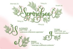 Springbee - Modern Calligraphy Product Image 8