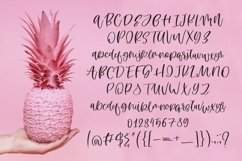 Web Font Pineapple Dreams Product Image 5