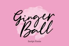 Web Font Gingerball - Script Font Product Image 1