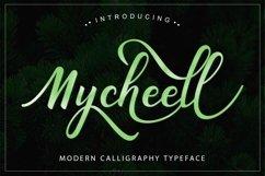 Web Font Mycheell Script Product Image 1