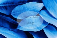 Foliage background pattern toned in dark blue Product Image 1