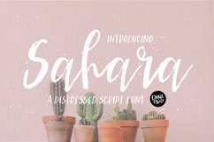 SAHARA a Distressed Brush Script Font Product Image 1