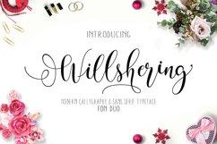 Willshering script Product Image 1