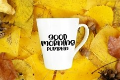 Web Font Hot Apple Cider - A Quirky Handlettered Font Product Image 2