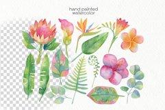 Watercolor Tropics Clipart Product Image 5