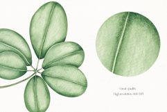 """Watercolor ClipArt """"Tropical Leaves"""" Product Image 3"""