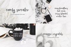 The Winter Font Bundle Product Image 3