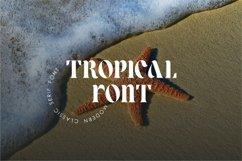 Lower Coast | Serif Display Product Image 2