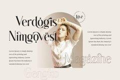 Gingko Ligature Typeface Product Image 4